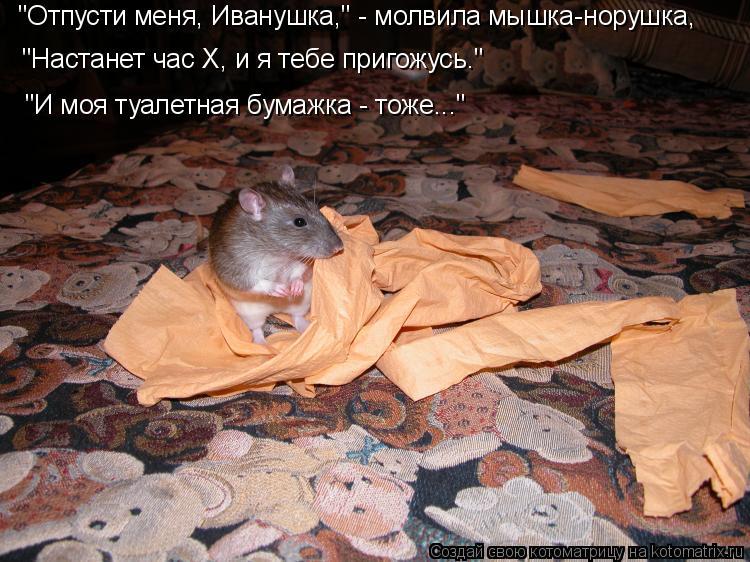 "Котоматрица: ""Отпусти меня, Иванушка,"" - молвила мышка-норушка, ""Настанет час Х, и я тебе пригожусь."" ""И моя туалетная бумажка - тоже..."""