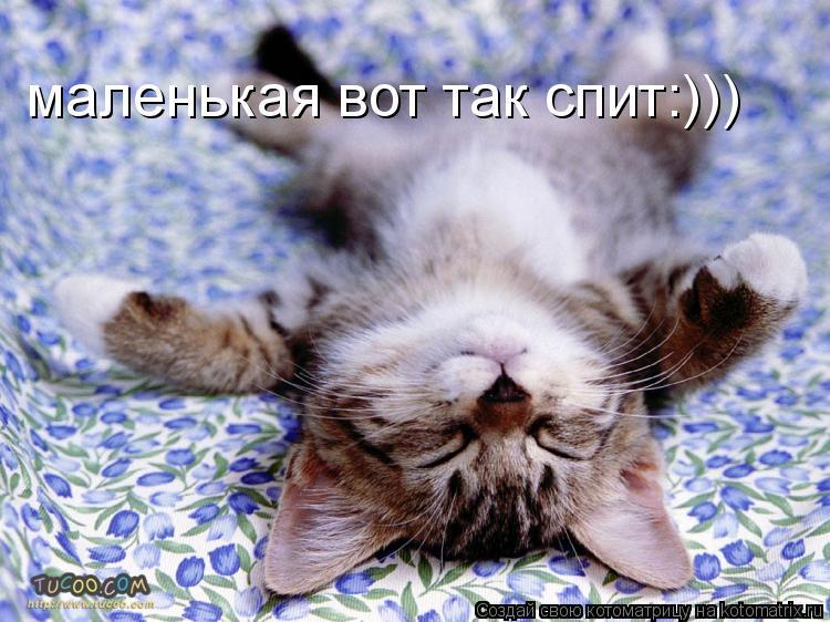 Котоматрица: маленькая вот так спит:)))