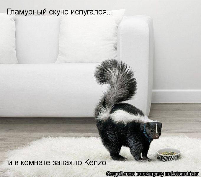 Котоматрица: Гламурный скунс испугался... и в комнате запахло Kenzo.