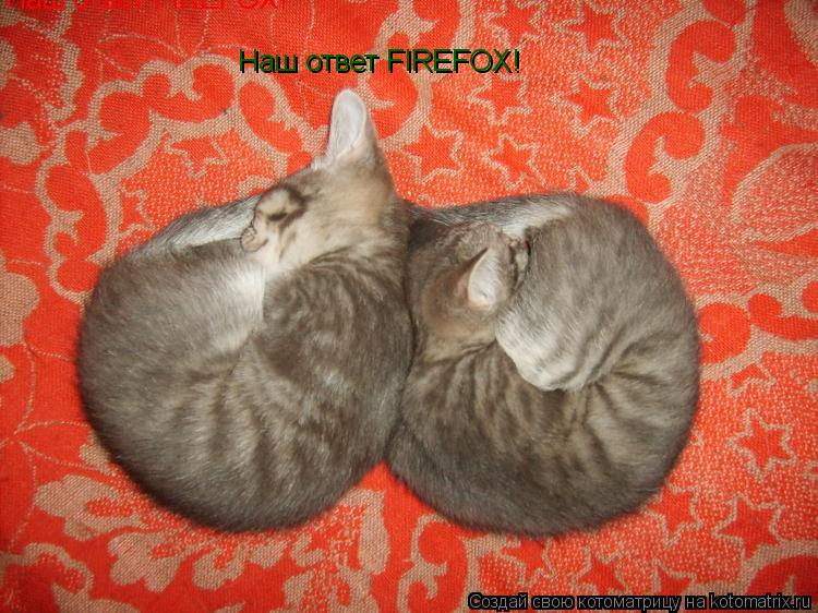 Котоматрица: Наш ответ FIREFOX!   Наш ответ FIREFOX!