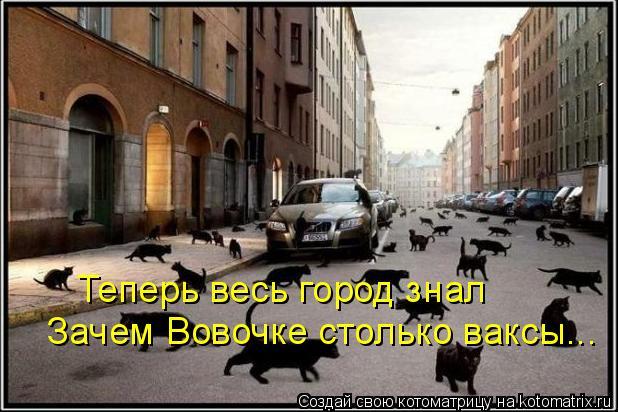 Котоматрица: Теперь весь город знал Зачем Вовочке столько ваксы...