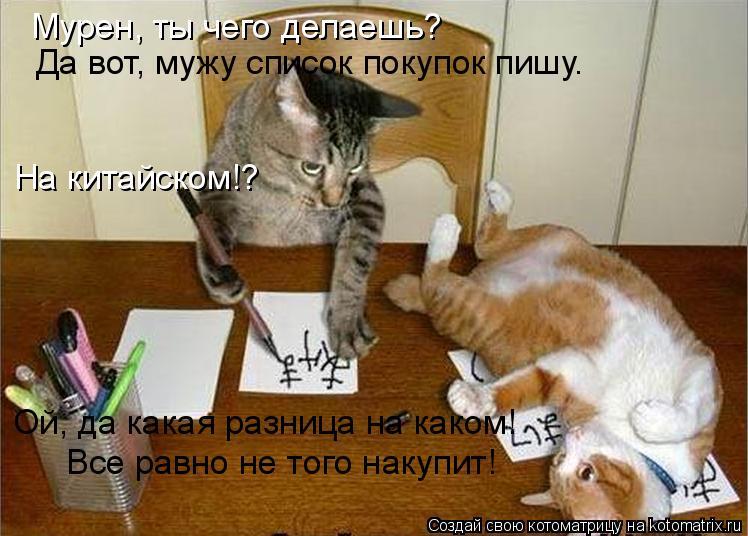 Котоматрица: Мурен, ты чего делаешь? Да вот, мужу список покупок пишу. На китайском!? Ой, да какая разница на каком! Все равно не того накупит!