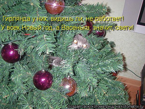 Котоматрица: Гирлянда у них, видишь ли, не работает! У всех Новый год, а Васенька, значит, свети!