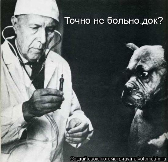 Котоматрица: Точно не больно,док?