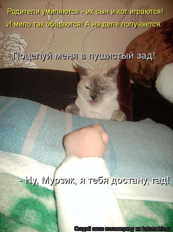 Котоматрица: Родители умиляются - их сын и кот играются! И мило так общаются! А на деле получается: - Ну, Мурзик, я тебя достану, гад! - Поцелуй меня в пушисты
