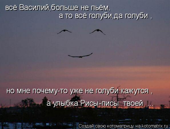 Котоматрица: всё Василий,больше не пьём, а то всё голуби,да голуби , но мне почему-то уже не голуби кажутся , а улыбка Рисы-писы  твоей  ...