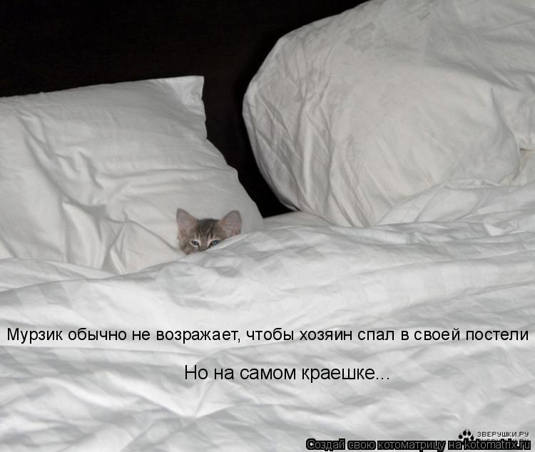 Котоматрица: Мурзик обычно не возражает, чтобы хозяин спал в своей постели Но на самом краешке...
