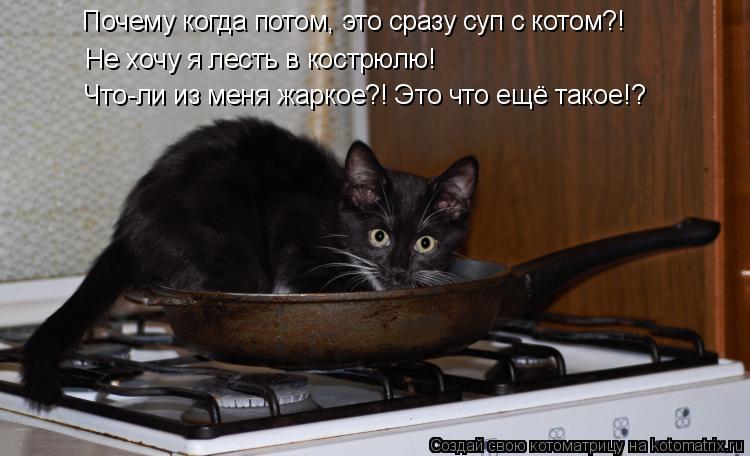Котоматрица: Почему когда потом, это сразу суп с котом?! Не хочу я лесть в кострюлю! Что-ли из меня жаркое?! Это что ещё такое!?