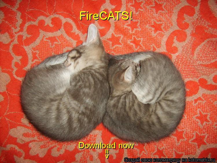 Котоматрица: FireCATS! Download now =>