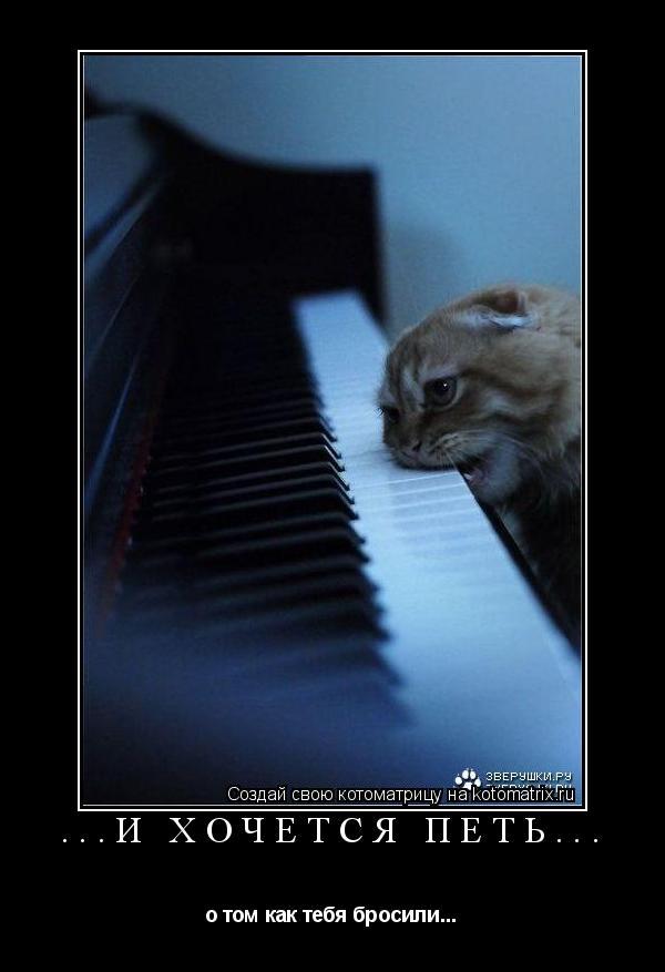 Котоматрица: ...И хочется петь... о том как тебя бросили...