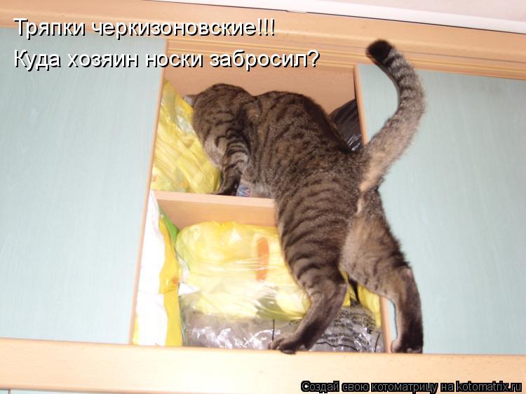 Котоматрица: Тряпки черкизоновские!!! Куда хозяин носки забросил?