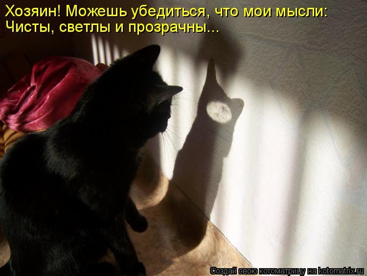 Котоматрица: Хозяин! Можешь убедиться, что мои мысли: Чисты, светлы и прозрачны...