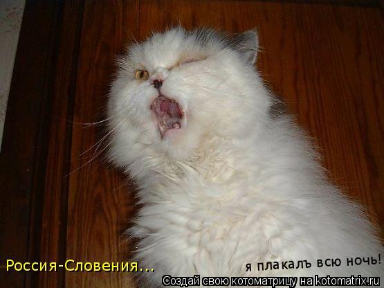 Котоматрица: Россия-Словения... я плакалъ всю ночь!