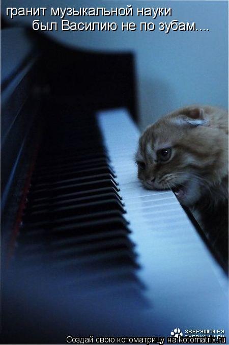 Котоматрица: гранит музыкальной науки был Василию не по зубам....