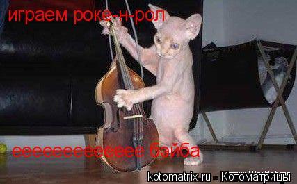 Котоматрица: играем роке-н-рол  еееееееееееее бэйба