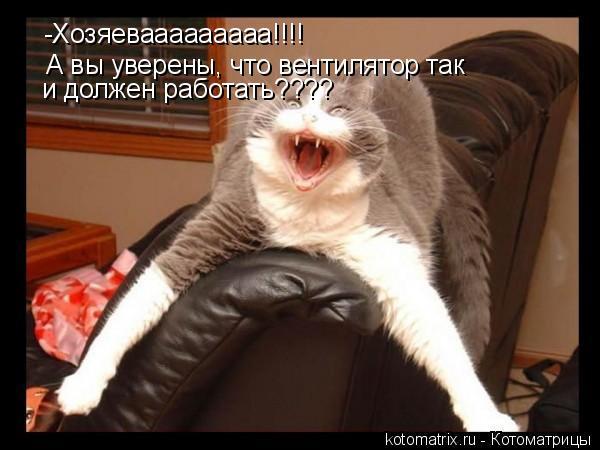 Котоматрица: -Хозяевааааааааа!!!! А вы уверены, что вентилятор так и должен работать????