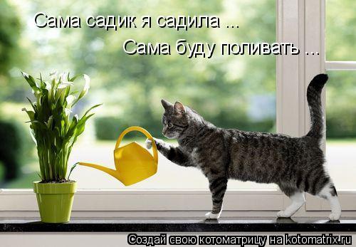 Котоматрица: Сама садик я садила ... Сама буду поливать ...