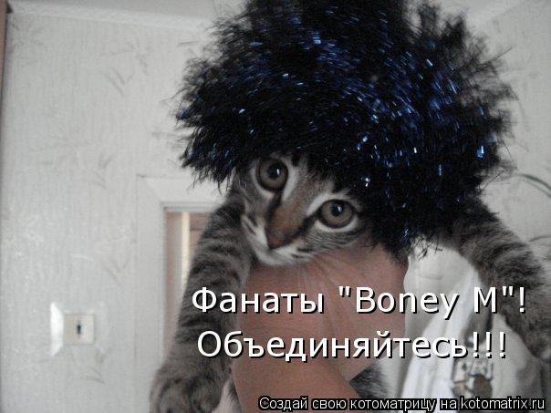 """Котоматрица: Фанаты """"Boney M""""! Объединяйтесь!!!"""