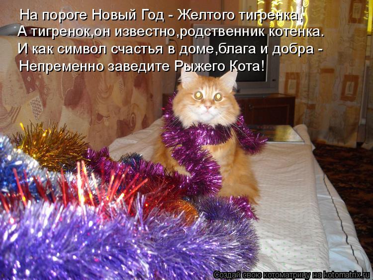 Котоматрица: На пороге Новый Год - Желтого тигренка, А тигренок,он известно,родственник котенка. И как символ счастья в доме,блага и добра - Непременно за