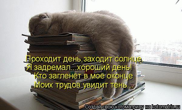Котоматрица: Проходит день,заходит солнце. Я задремал...хороший день! Кто загленёт в моё оконце Моих трудов увидит тень...