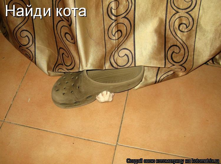 Котоматрица: Найди кота