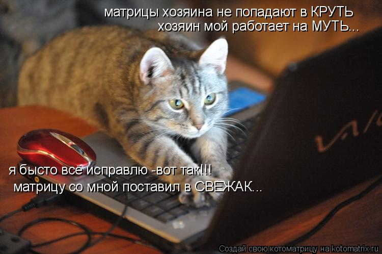 Котоматрица: матрицы хозяина не попадают в КРУТЬ хозяин мой работает на МУТЬ... я бысто всё исправлю -вот так!!! матрицу со мной поставил в СВЕЖАК...
