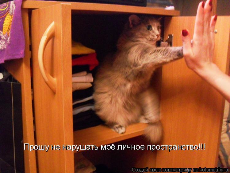 Котоматрица: Прошу не нарушать моё личное пространство!!!