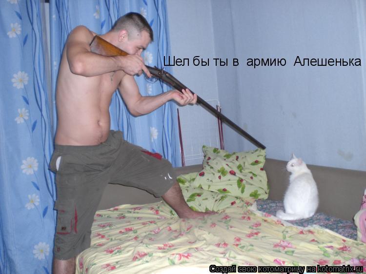 Котоматрица: Шел бы ты в  армию  Алешенька