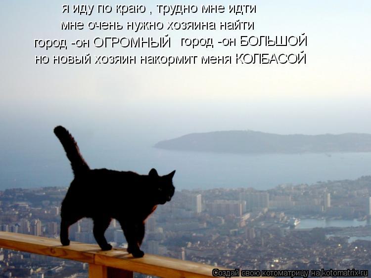 Котоматрица: я иду по краю , трудно мне идти мне очень нужно хозяина найти город -он ОГРОМНЫЙ город -он БОЛЬШОЙ но новый хозяин накормит меня КОЛБАСОЙ