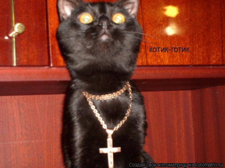 Котоматрица: котик-готик