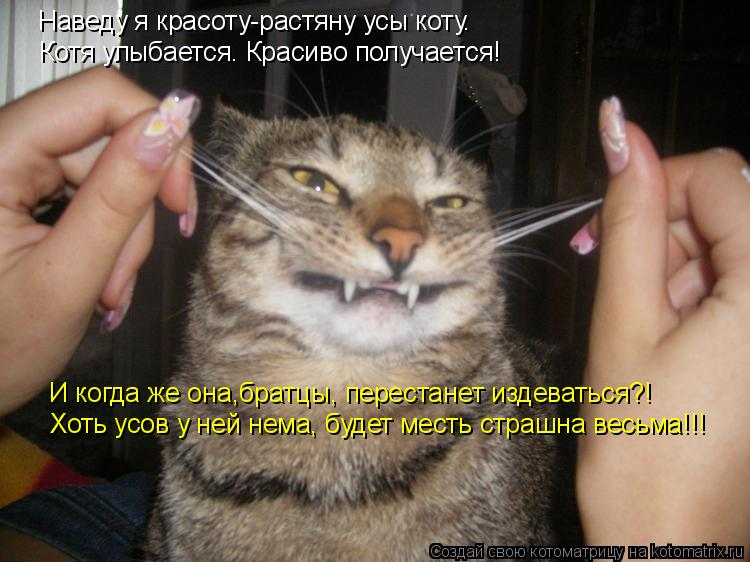 Котоматрица: Наведу я красоту-растяну усы коту. Котя улыбается. Красиво получается! Хоть усов у ней нема, будет месть страшна весьма!!! И когда же она,брат
