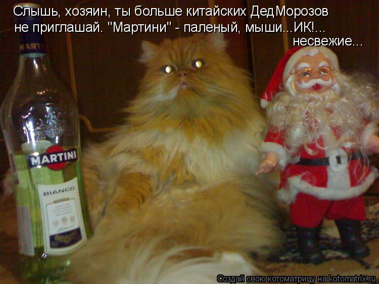 """Котоматрица: Слышь, хозяин, ты больше китайских ДедМорозов не приглашай. """"Мартини"""" - паленый, мыши...ИК!... несвежие..."""