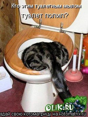 Котоматрица: Кто этим туалетным мылом туалет полил?