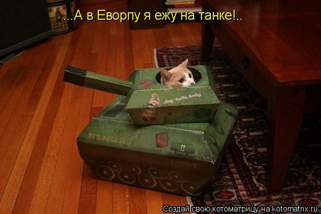 Котоматрица: ...А в Еворпу я ежу на танке!..