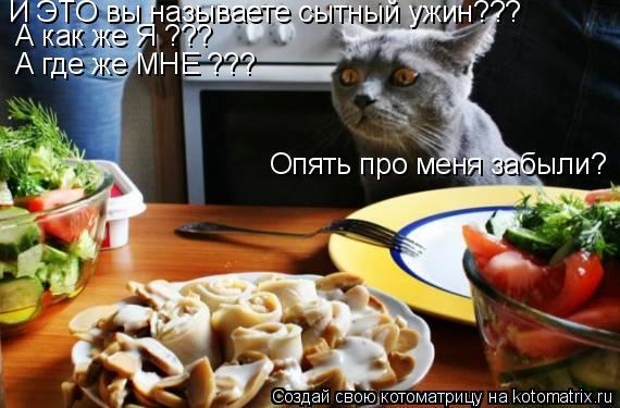 Котоматрица: А как же Я ???  А где же МНЕ ???  Опять про меня забыли? И ЭТО вы называете сытный ужин???