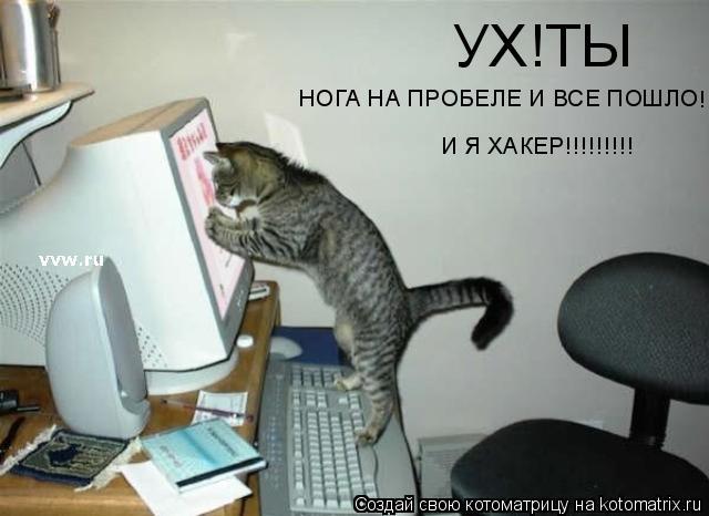 Котоматрица: УХ!ТЫ НОГА НА ПРОБЕЛЕ И ВСЕ ПОШЛО ! И Я ХАКЕР!!!!!!!!!