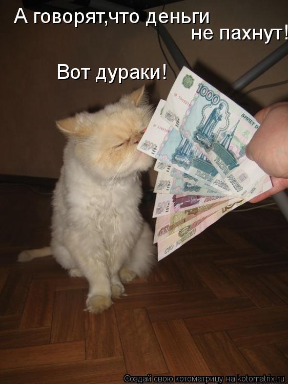Котоматрица: А говорят,что деньги не пахнут! Вот дураки!