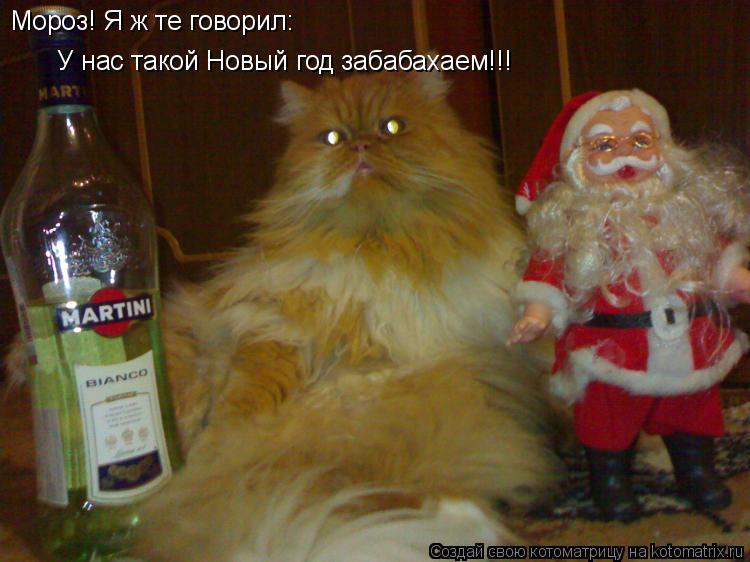 Котоматрица: Мороз! Я ж те говорил: У нас такой Новый год забабахаем!!!