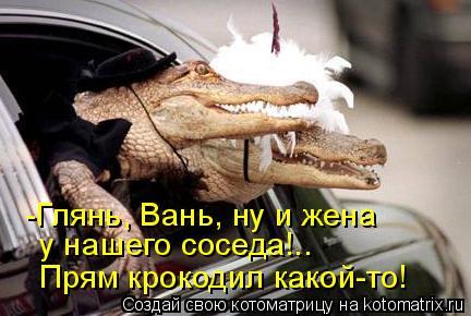 Котоматрица: -Глянь, Вань, ну и жена у нашего соседа!.. Прям крокодил какой-то!