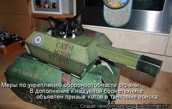 Котоматрица: Меры по укреплению обороноспобности страны: В дополнение к надувной бронетехнике объявлен призыв котов в танковые войска