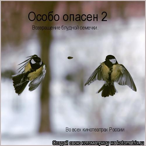 Котоматрица: Особо опасен 2 Возвращение блудной семечки.. Во всех кинотеатрах России
