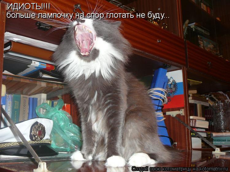 Котоматрица: ИДИОТЫ!!! больше лампочку на спор глотать не буду...