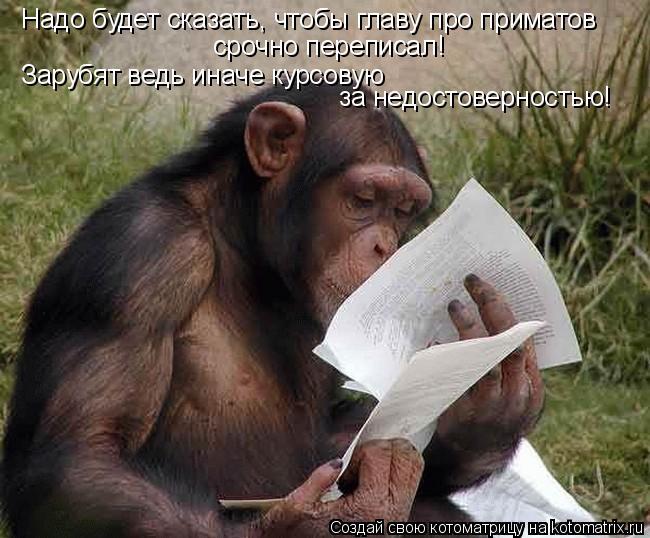 Котоматрица: Надо будет сказать, чтобы главу про приматов  срочно переписал! Зарубят ведь иначе курсовую  за недостоверностью!