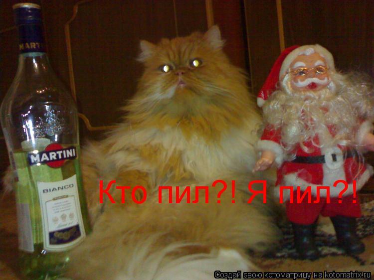 Котоматрица: Кто пил?! Я пил?!