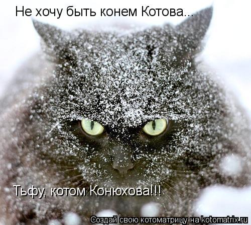 Котоматрица: Не хочу быть конем Котова... Тьфу, котом Конюхова!!!