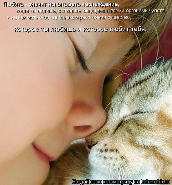 Котоматрица: Любить - значит испытывать наслаждение, когда ты видишь, осязаешь, ощущаешь всеми органами чувств и на как можно более близком расстоянии с