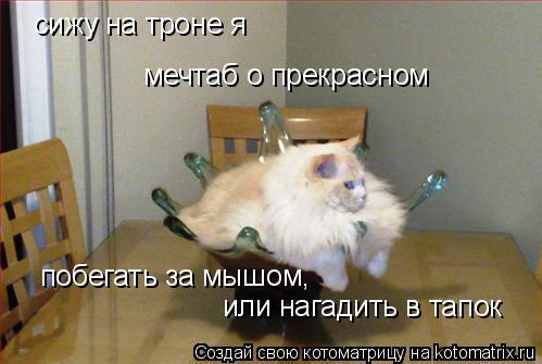 Котоматрица: сижу на троне я мечтаб о прекрасном побегать за мышом,  или нагадить в тапок