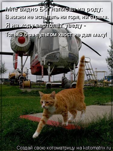 Котоматрица: Мне видно Бог написал на роду: В жизни не испытать ни горя, ни страха.  Я на ходу вертолёт уведу -  Только б за пультом хвост не дал маху!