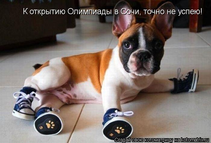 Котоматрица: К открытию Олимпиады в Сочи, точно не успею!