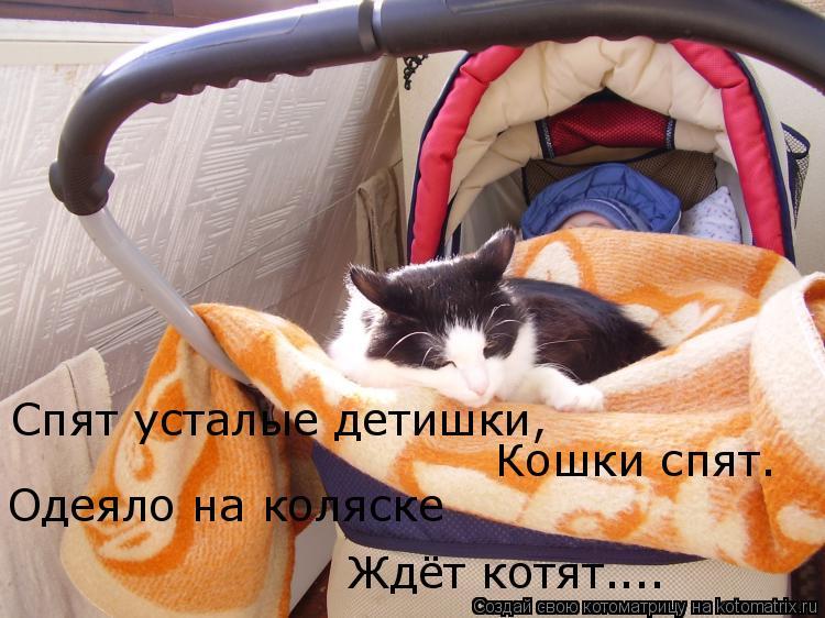 Котоматрица: Спят усталые детишки, Кошки спят. Одеяло на коляске  Ждёт котят… …..
